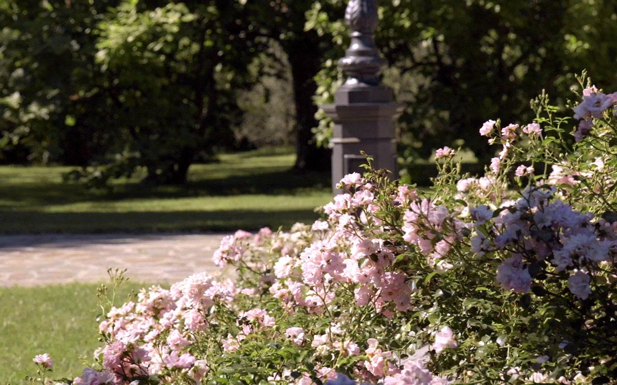 Giardini Terrazzati. Fabulous Abitazione Privata Giardino In Stile ...