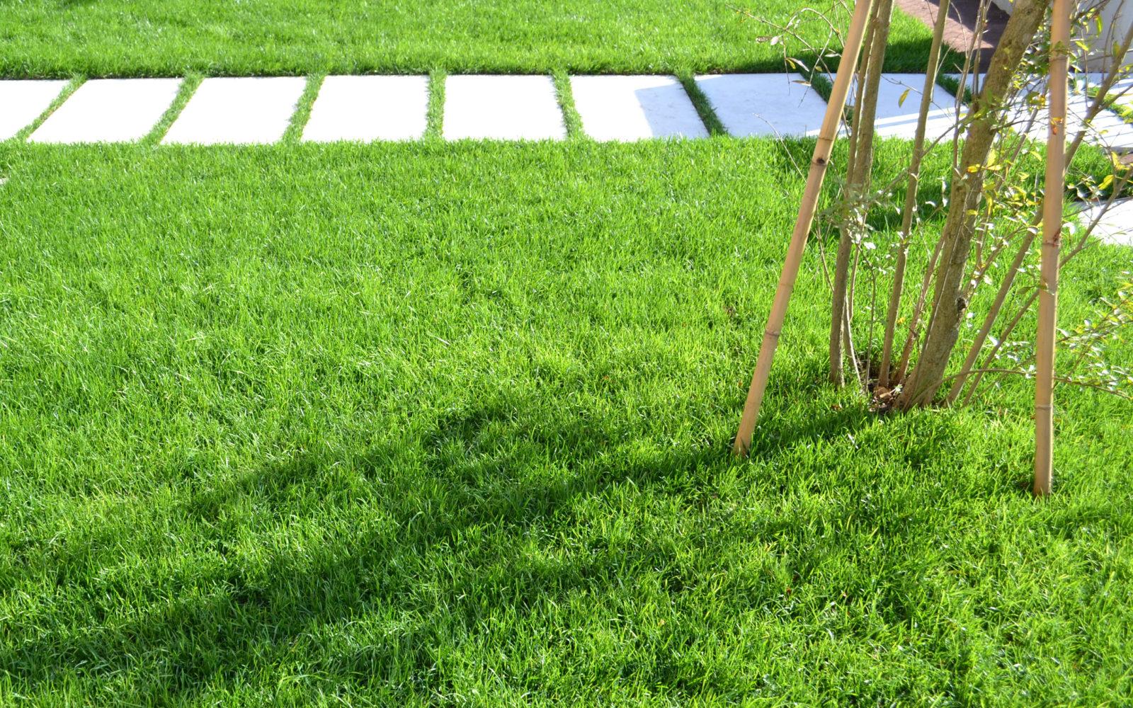 piccolo giardino domestico privato a Villorba - 3