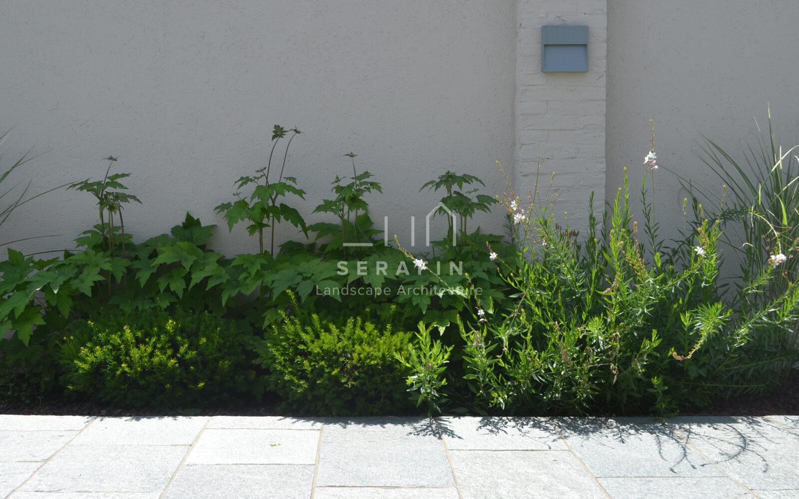 giardino privato a Bassano del Grappa - 2