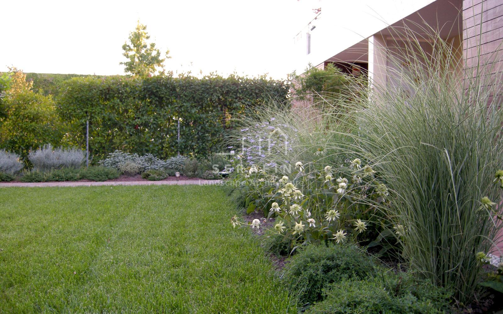 giardino privato con erbacee perenni a Treviso - 2