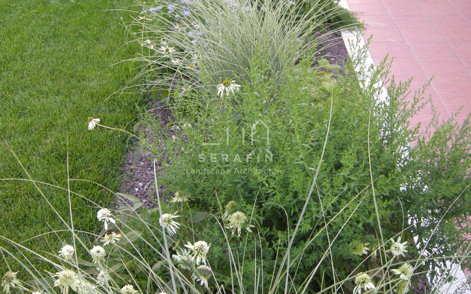 giardino privato con erbacee perenni a Treviso - 4