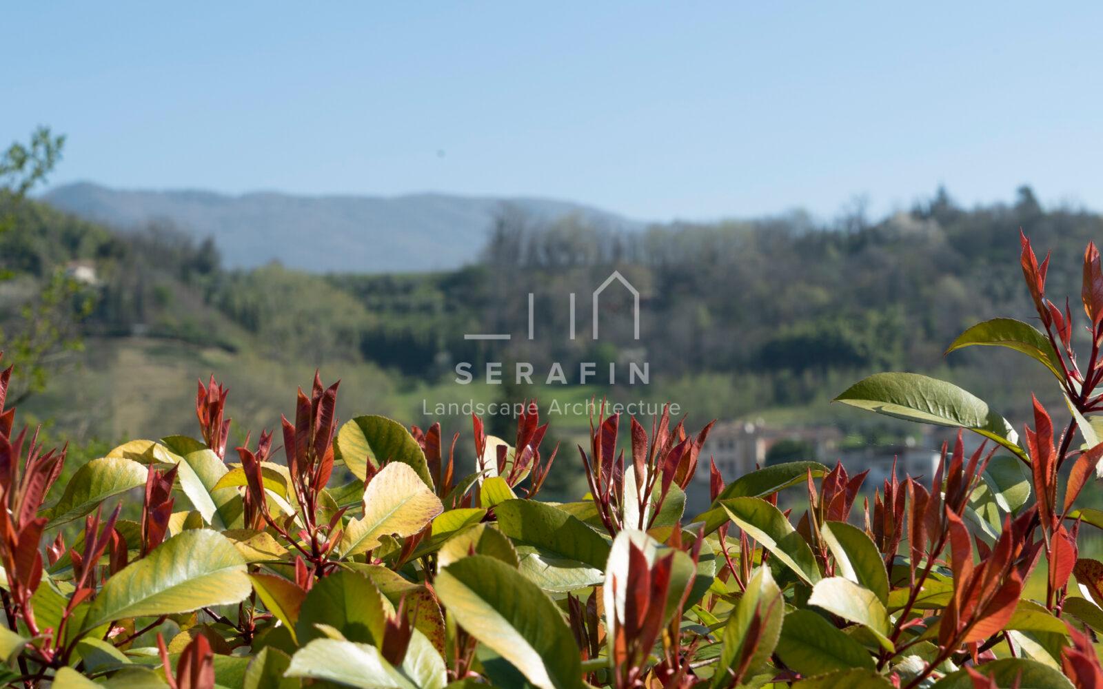 progetto giardino privato moderno a Vittorio Veneto - 6
