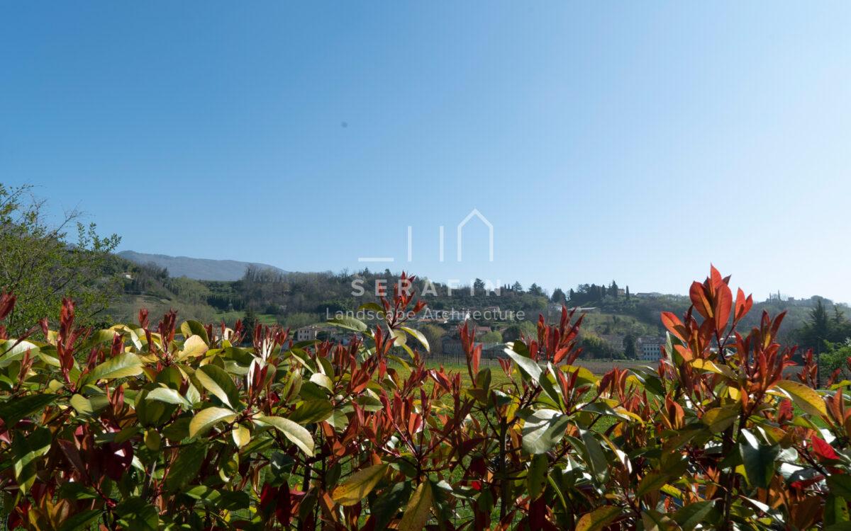 progetto giardino privato moderno a Vittorio Veneto - 8