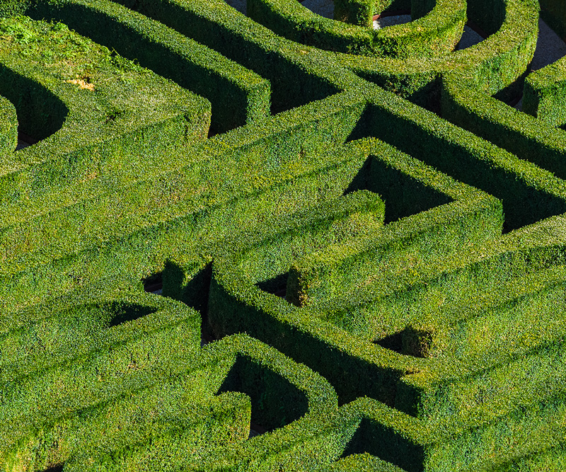Photo of hedge and maze in classic garden