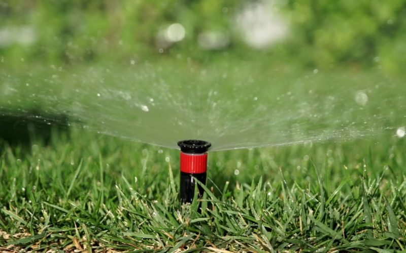 photo of low consumption irrigation systems for companies, shops and shops