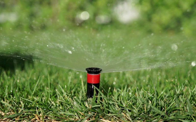 foto impianti irrigazione basso consumo per aziende negozi e shop