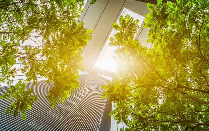 photo environmental sustainability and energy efficiency for company gardens, stores, shops and shops
