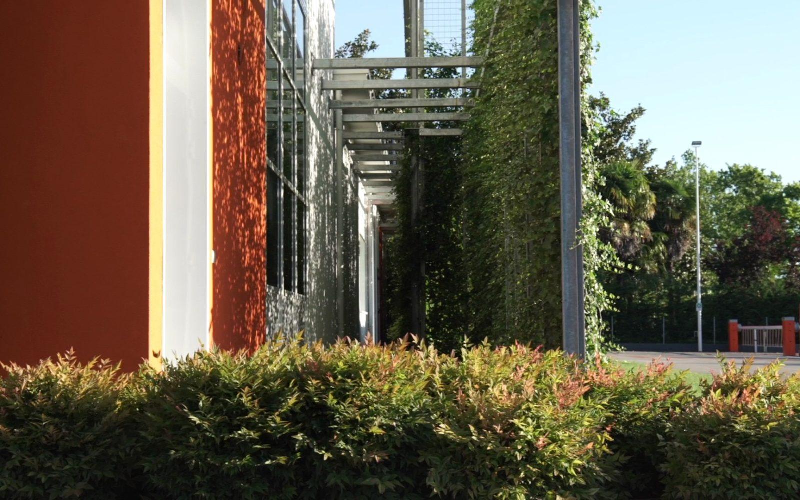 progetto verde esterno e giardino per aziende e attività commerciali